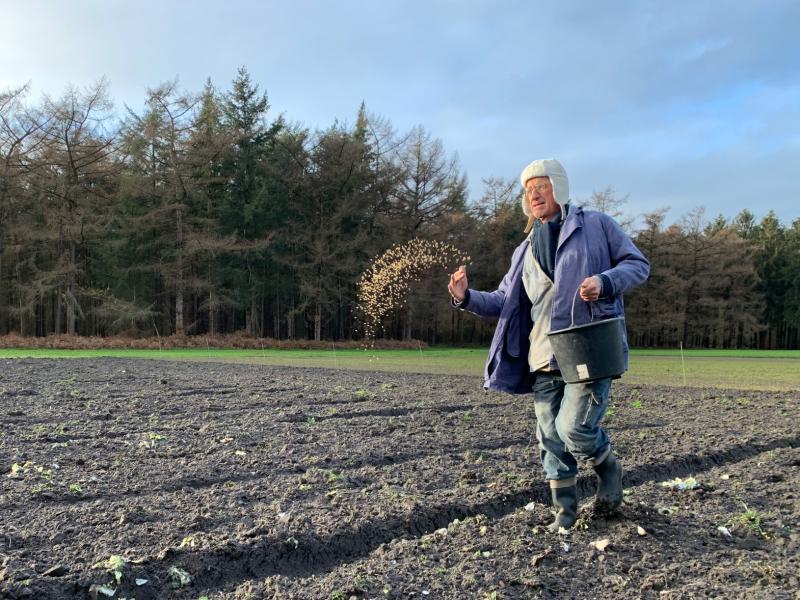 Waarom gebruiken boeren groenbemesters?