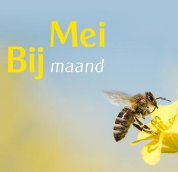 Meer bijen voor meer biodiversiteit